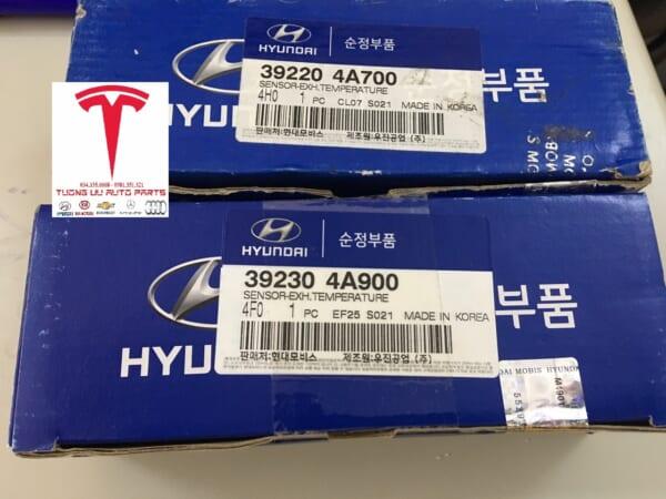 Cảm biến khí xả Hyundai Porter II